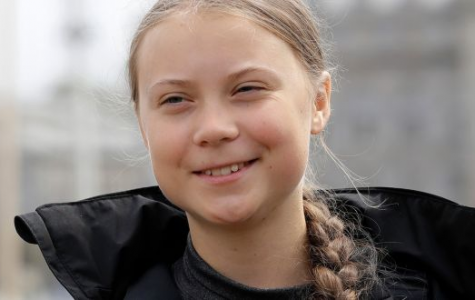 Climate activist Greta Thunberg started skipping school on Fridays to protest climate pollution.
