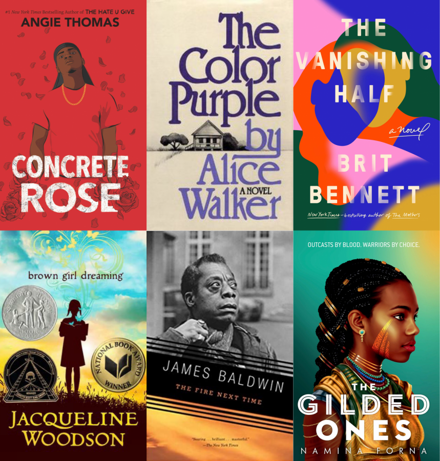 Top Left to Bottom Right:  Concrete Rose; The Color Purple; The Vanishing Half; Brown Girl Dreaming; The Fire Next Time; The Gilded Ones